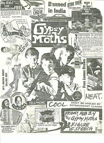 Gyspsy Moths FOS Flyer