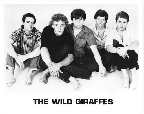 Wild Giraffes 01