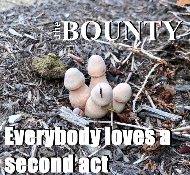 The Bounty ELASA Cover